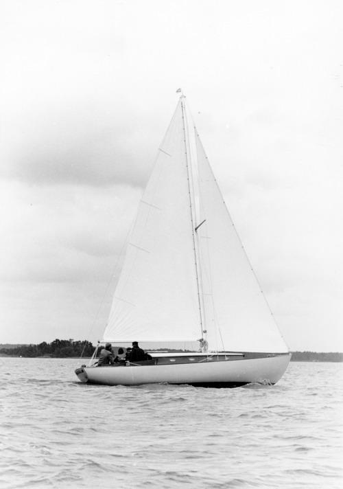 P.typ Schelin 1962 Christin