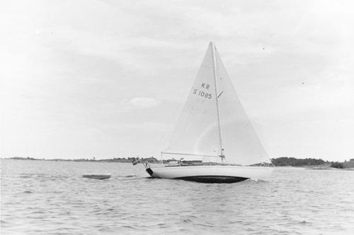 Schelinkryssare 1965
